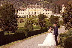 Vin potable de jeunes mariés Photographie stock