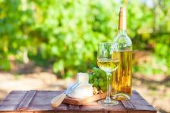 Vin, raisins, écrous, fromage sur le vignoble Dîner, déjeuner, romantique photos stock