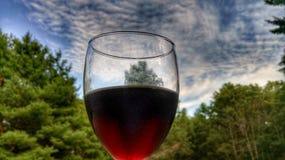 Vin rouge contre le ciel Images stock