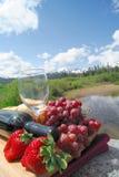 vin rouge de fraises de raisins Photos stock