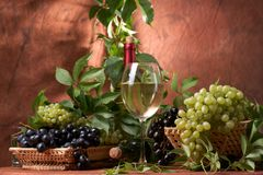 Vin sec blanc Photos stock