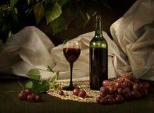 Vin sec rouge Photos libres de droits