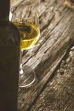 Vin sur le bois Photographie stock libre de droits