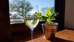 Vin vid fönstret Arkivbilder