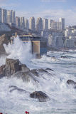 Vina del Mar, o Chile Fotografia de Stock