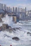 vina mar del Чили Стоковая Фотография