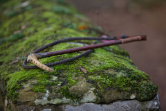 Vinage whip. Vintage whip lying on the mossy stone wall Royalty Free Stock Photos