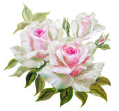 Vinage white pink roses. Royalty Free Stock Photos