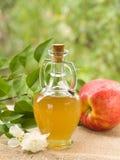 Vinagre de cidra de Apple Fotografia de Stock