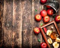 Vinagre de sidra de Apple, manzanas rojas en la bandeja vieja Foto de archivo