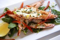 Vinagrete grelhado dos camarões, do Rocket & do tomate Imagem de Stock Royalty Free