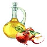 Vinaigre de cidre d'Apple Illustration d'aquarelle illustration stock