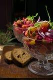 The vinaigrette beet salad. The vinaigrette salad with bread on the wood stock image