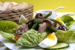 vinaigrette för tonfisk för tomater för sallad för potatisar för olivgrön för nicoise för green för druva för ägg för dressing fö Arkivfoto