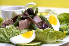 vinaigrette för tonfisk för tomater för sallad för potatisar för olivgrön för nicoise för green för druva för ägg för dressing fö Arkivfoton