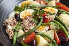 vinaigrette för tonfisk för tomater för sallad för potatisar för olivgrön för nicoise för green för druva för ägg för dressing fö royaltyfri foto