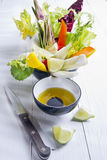 Vinaigrette with mixed vegetables Royalty Free Stock Photography