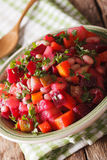 Vinaigrette salad with beets, carrots, beans, potatoes and onion Royalty Free Stock Photo