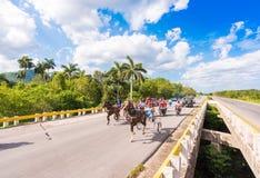 VINALES,古巴- 2017年5月13日:古巴赛马在treasse 复制文本的空间 库存照片