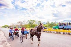 VINALES,古巴- 2017年5月13日:古巴赛马在treasse 复制文本的空间 免版税库存图片
