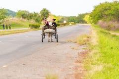 VINALES,古巴- 2017年5月13日:有一匹马的一个推车在路 复制文本的空间 免版税库存照片