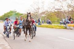 VINALES,古巴- 2017年5月13日:赛马 复制文本的空间 免版税库存照片