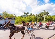 VINALES, ΚΟΥΒΑ - 13 ΜΑΐΟΥ 2017: Κουβανικός ιππόδρομος στο treasse Διάστημα αντιγράφων για το κείμενο Στοκ Φωτογραφίες