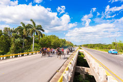 VINALES, ΚΟΥΒΑ - 13 ΜΑΐΟΥ 2017: Κουβανικός ιππόδρομος στο treasse Διάστημα αντιγράφων για το κείμενο Στοκ φωτογραφίες με δικαίωμα ελεύθερης χρήσης