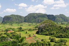 vinales долины Кубы Стоковая Фотография