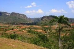 vinales долины Стоковое фото RF