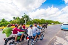 VINALES, КУБА - 13-ОЕ МАЯ 2017: Кубинськие лошадиные скачки на treasse Скопируйте космос для текста Стоковое Изображение RF