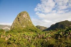 Vinales谷,古巴 免版税库存照片
