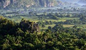 横跨Vinales谷的看法在古巴 早晨微明和雾 免版税图库摄影