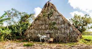 A typical view in Vinales Cuba royalty free stock images