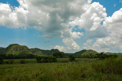 Vinales fields, Cuba. Vinales (orGreat view of the fields of Vinales, Cuba stock photo
