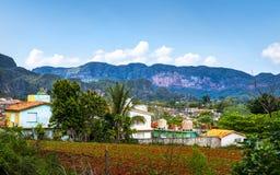 Vinales Kuba - mars 26 2019: Sikt av den Vinales dalen, UNESCO, Vinales, Pinar del Rio Province, Kuba royaltyfria foton