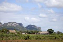 Vinales Nationalpark Stockbild