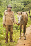 VINALES - OCTOBER 19: Unknown man with his horse on October 19,. 2015 in Vinales. Vinales is a small town and municipality in the north-central Pinar del Rio Royalty Free Stock Photography