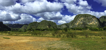 Vinales Stock Photos