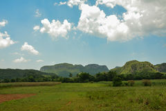 Vinales tobacco fields, Cuba. Vinales (or Viñales). An Vinales is well knowed for its tobacco royalty free stock images