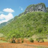 Vinales Valley Stock Photo
