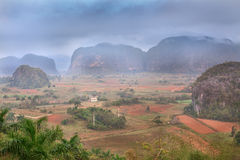 Vinales Valley in Cuba Royalty Free Stock Image