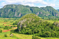 The Vinales valley in Cuba Stock Image