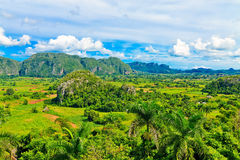 The Vinales valley in Cuba Royalty Free Stock Photography