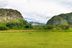 The Vinales valley in Cuba Royalty Free Stock Image