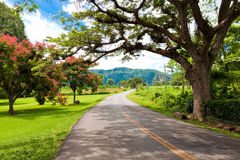 The Vinales valley in Cuba Stock Photos