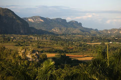 Vinales valley in Cuba Royalty Free Stock Photo