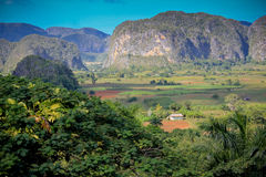 The Vinales valley in Cuba. A famous tourist destination and UNESCO Heritage Stock Images