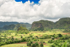 The Vinales Valley in Cuba Stock Photo