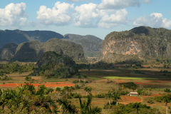 Vinales valley, Cuba Royalty Free Stock Image